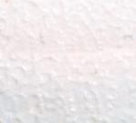 耐微生物性試験結果|防藻性試験