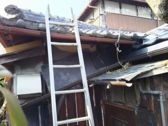 下屋根にハシゴを架ける