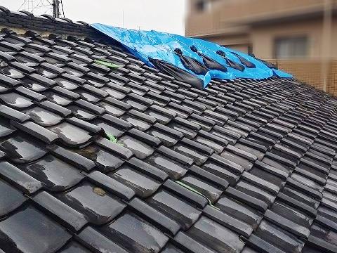 葺き替え前の屋根調査中