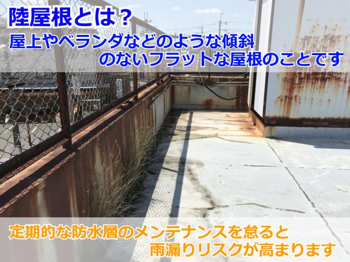 IMG_0510-2