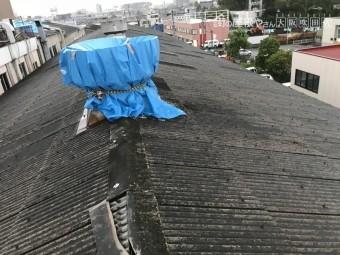 工場屋根ブルーシート養生