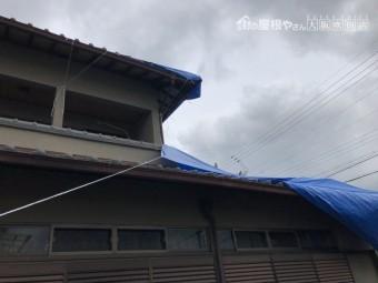 ブルーシート養生した屋根
