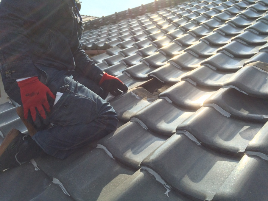 屋根調査する職人