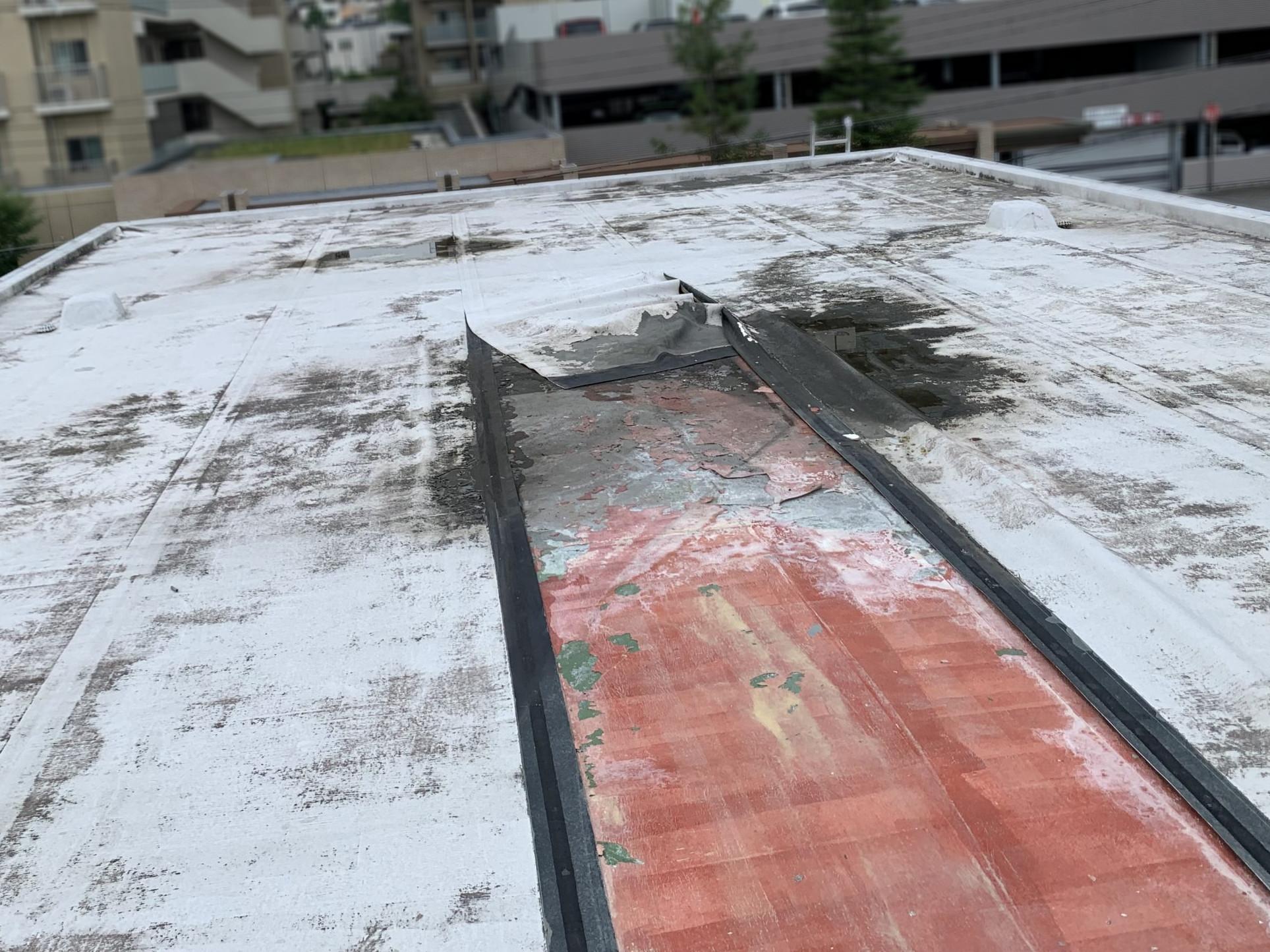 雨水が溜まった屋上屋根