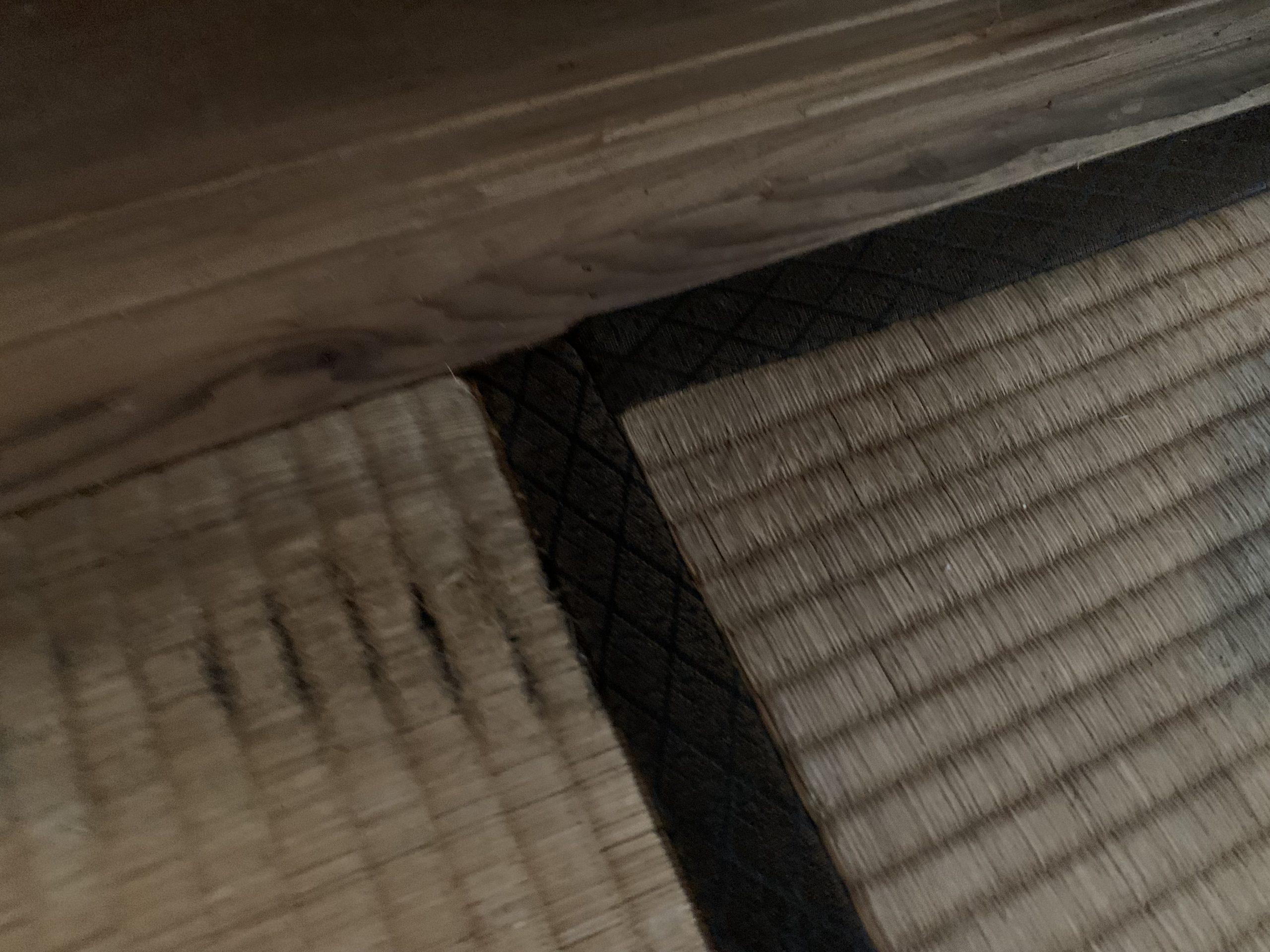 雨漏りにより傷んだ畳