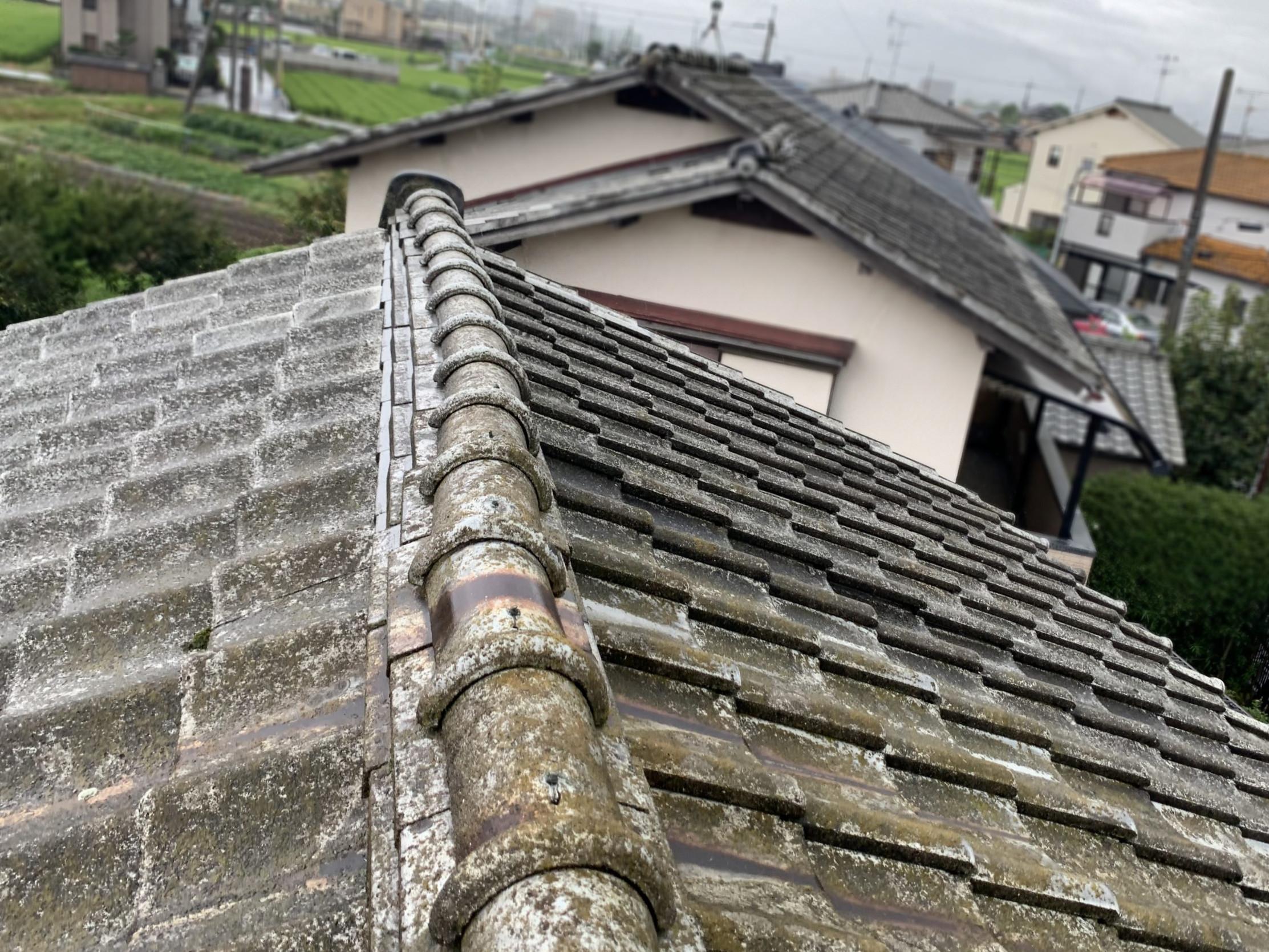 苔が繁殖した瓦屋根