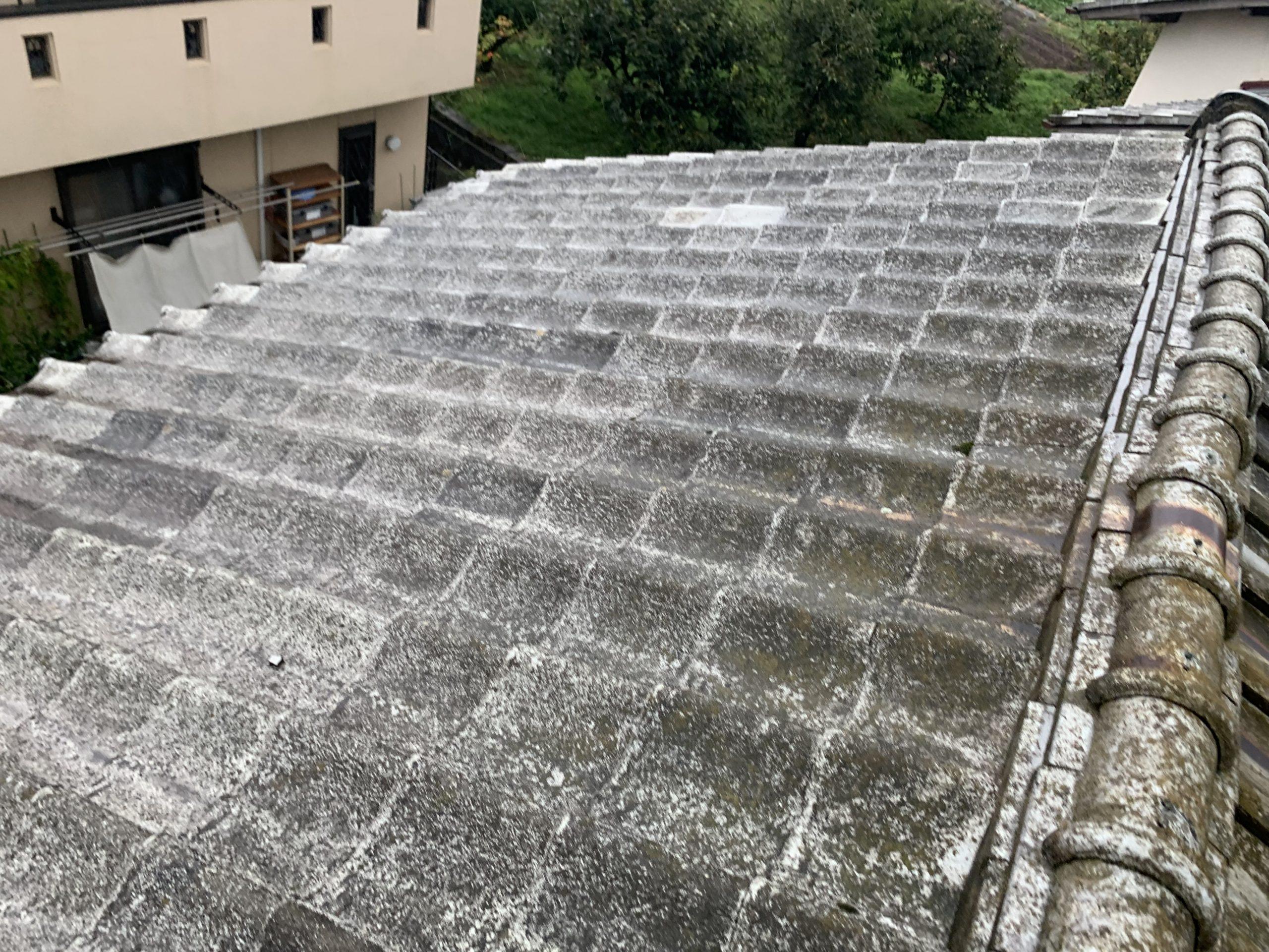 雨漏り箇所真上の瓦屋根