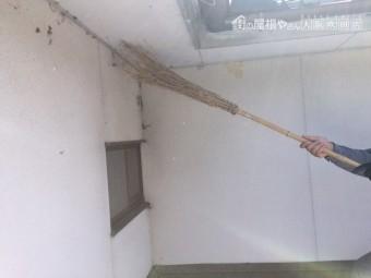 軒天のクモの巣の撤去