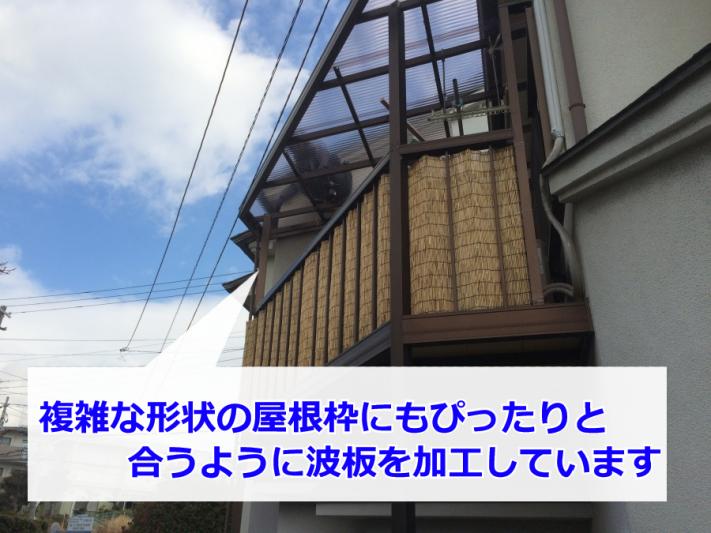 IMG_2565-11