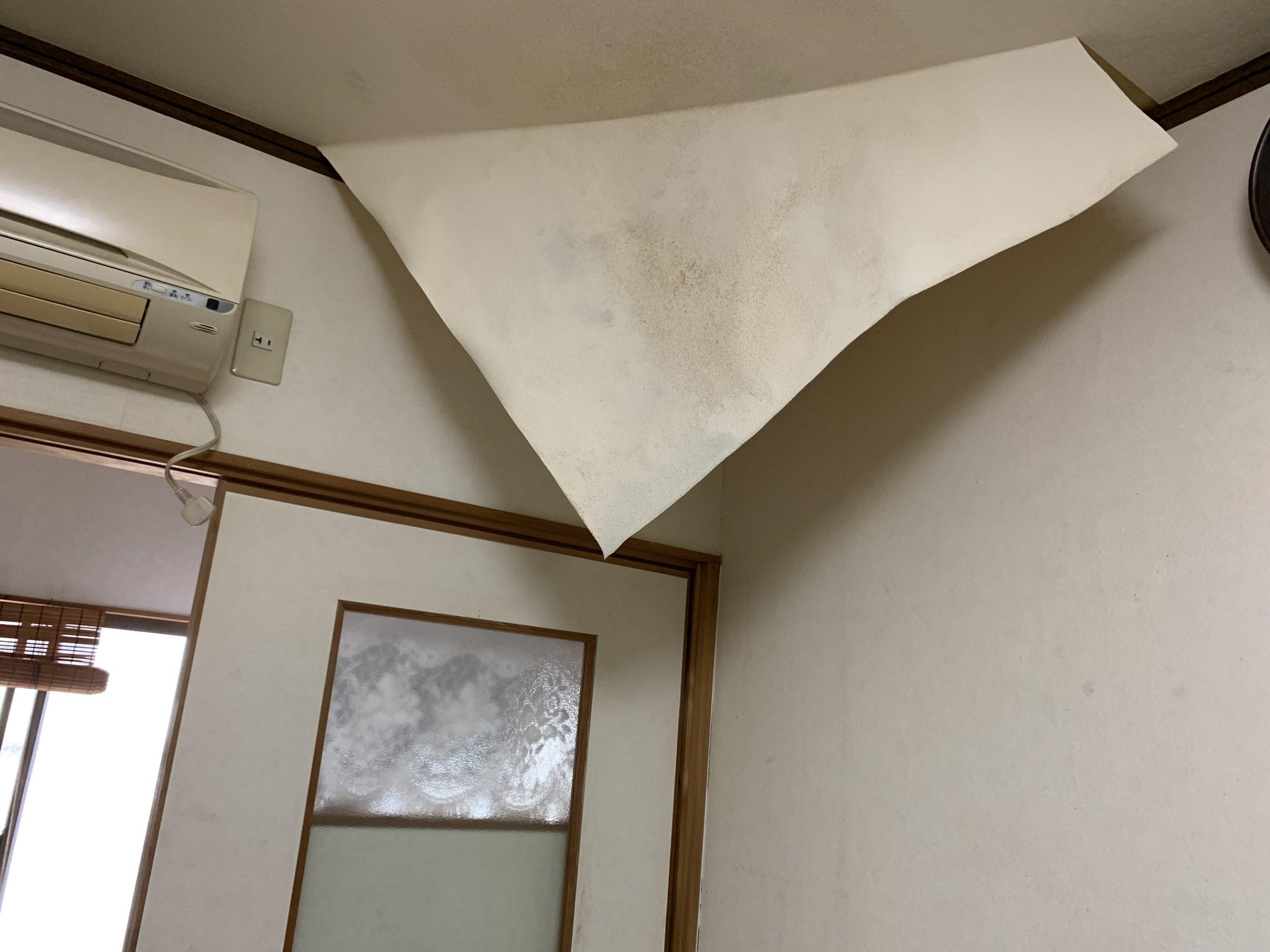 雨漏りによりめくれた天井クロス