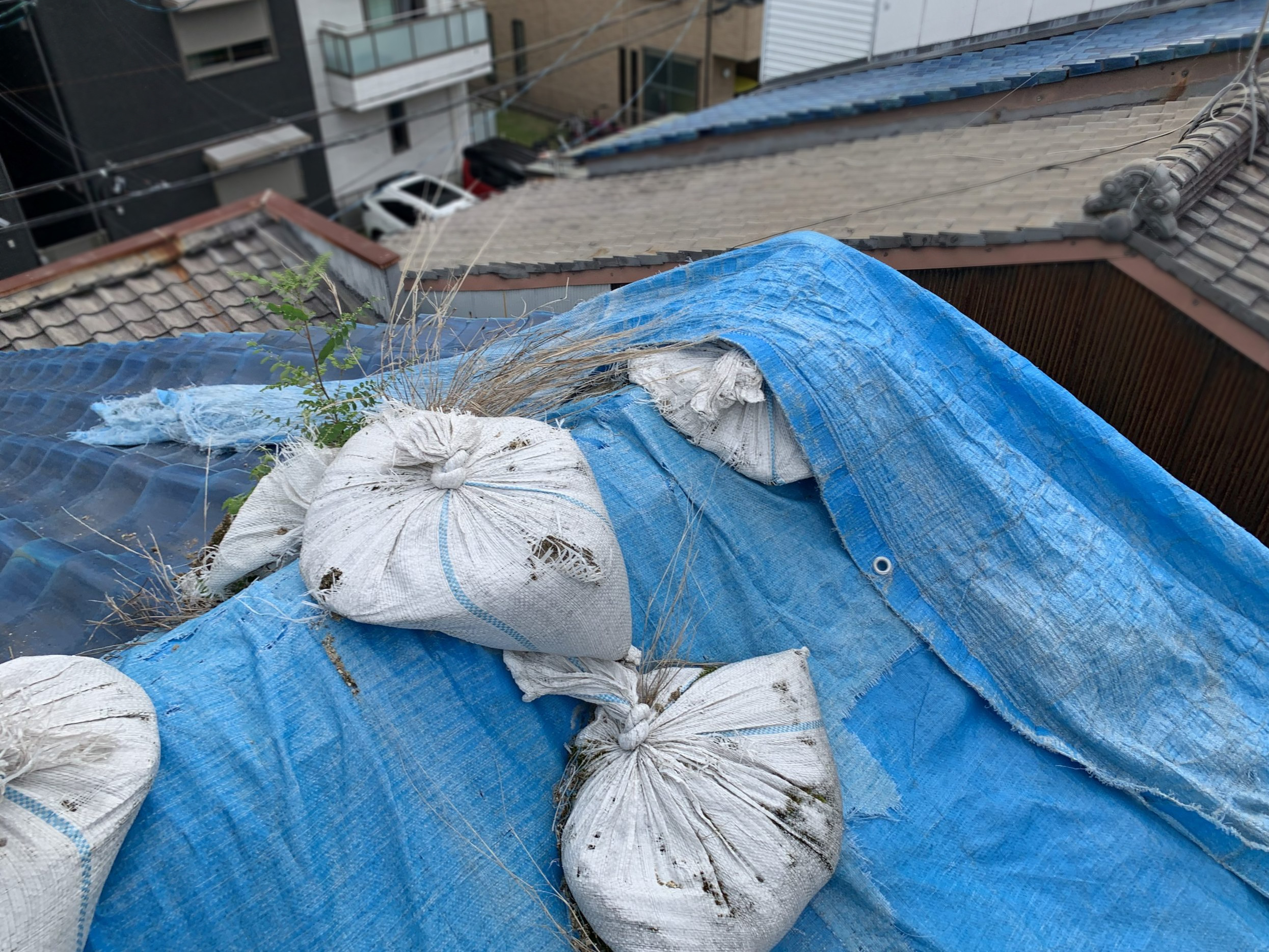 ブルーシートが張られた青い瓦屋根
