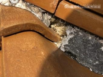 劣化した熨斗瓦下の漆喰