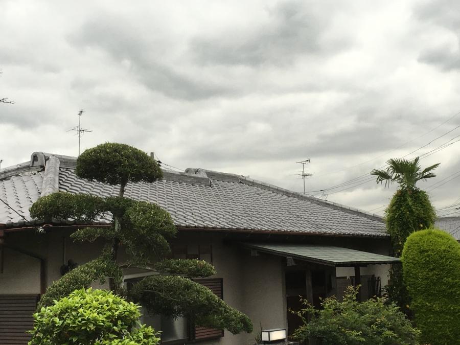 平屋瓦屋根建物外観