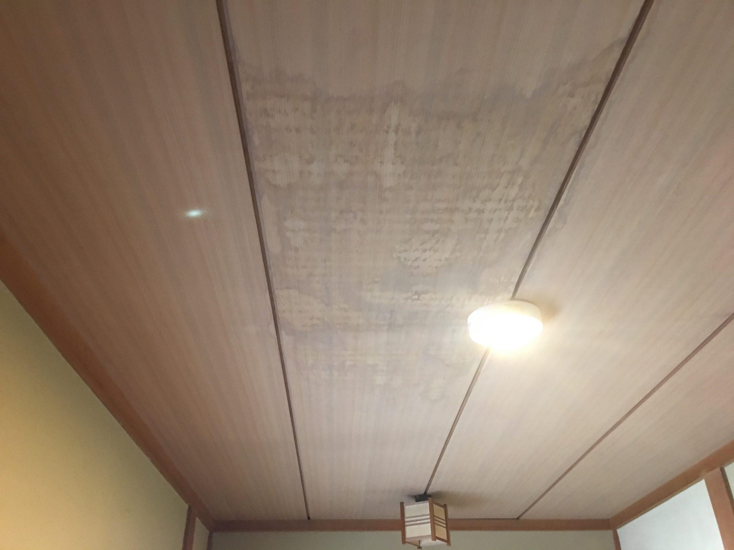 天井に生じた雨染み