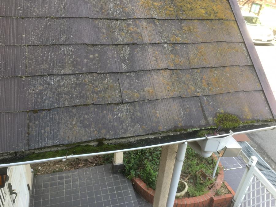 藻や苔が発生しているスレート屋根