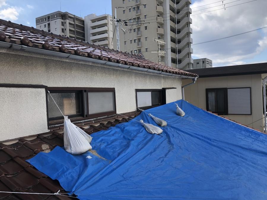 ブルーシートで覆われた建物