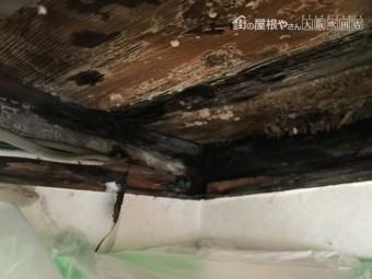天井の軸組み
