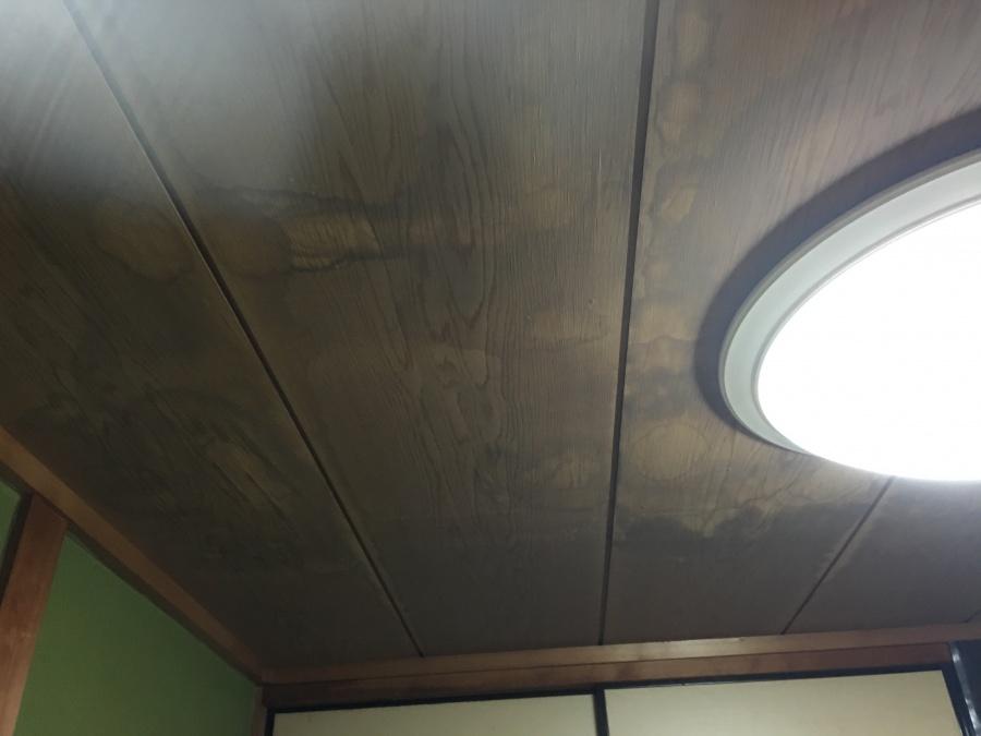 雨漏りによる天井雨染み