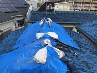 ブルーシートで屋根を養生