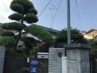 青い瓦屋根の和風の建物全貌
