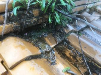 雨漏り調査