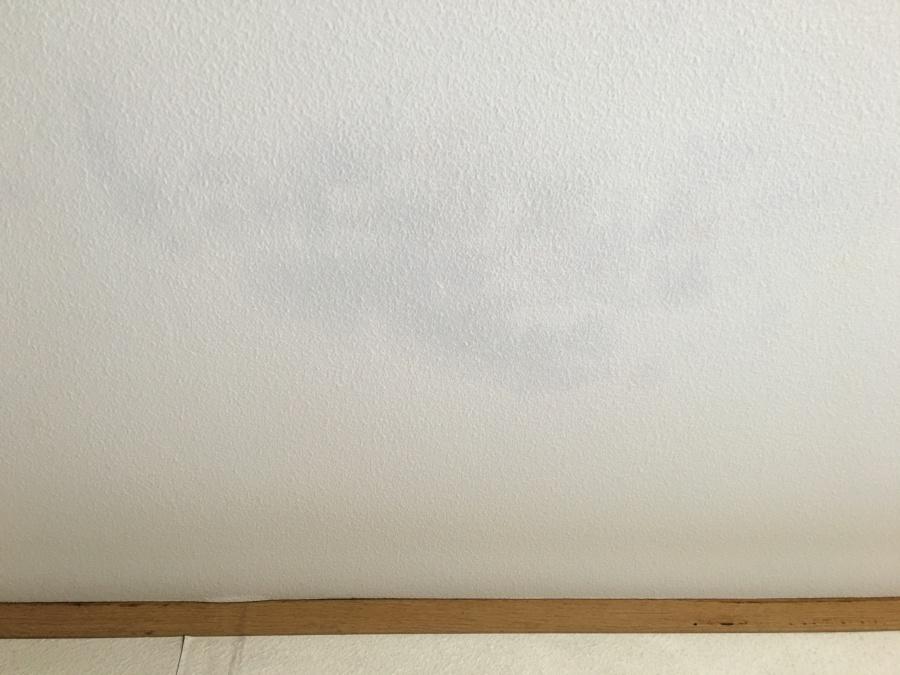 天井に見られる雨漏りの染み