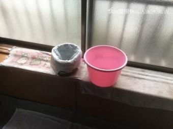 雨漏り発生で雨水を受けるバケツ