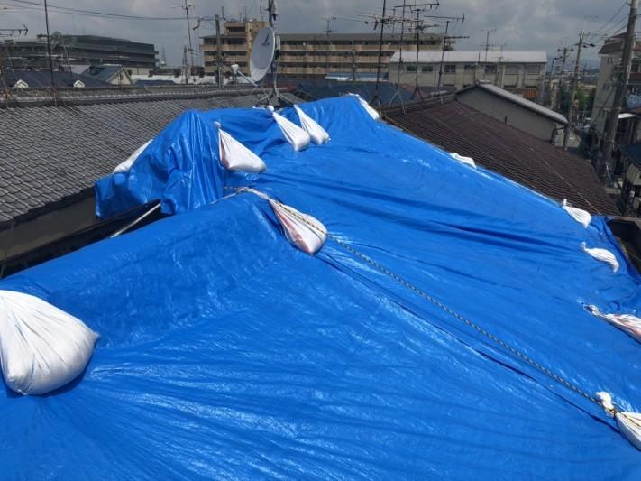 大きなブルーシートで屋根を養生