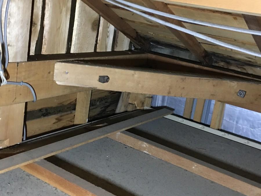 雨漏り箇所真上にあたる天井裏