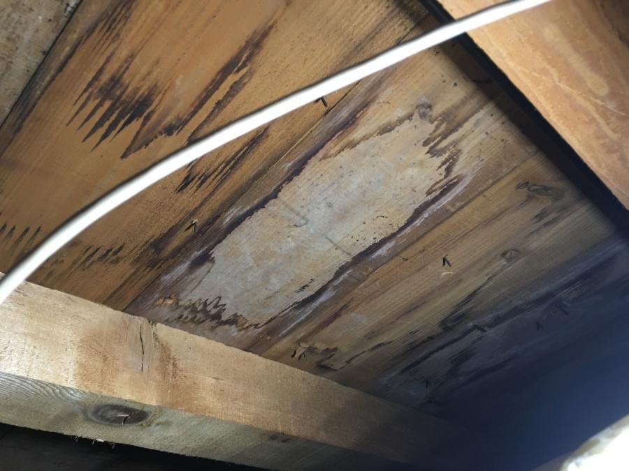 雨染み屋根裏