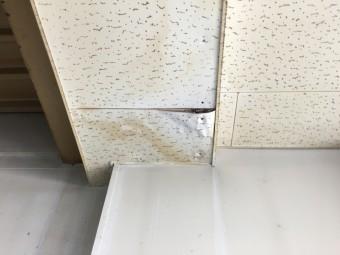 天井雨漏り剥がれ