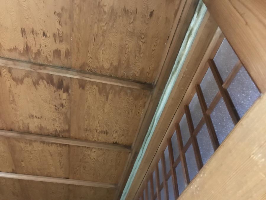 天井雨漏り雨染み