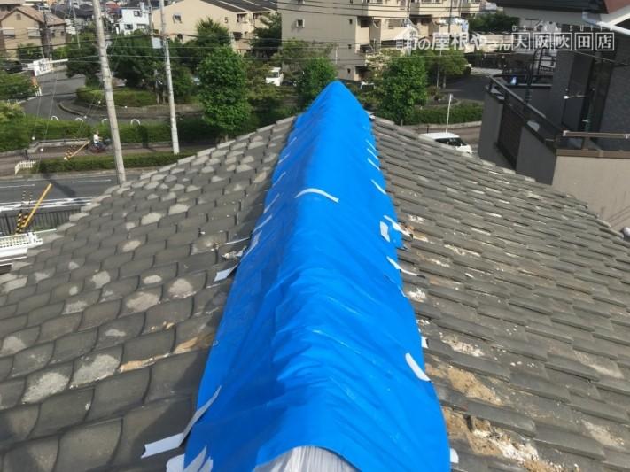 ブルーシート養生した瓦屋根の大棟