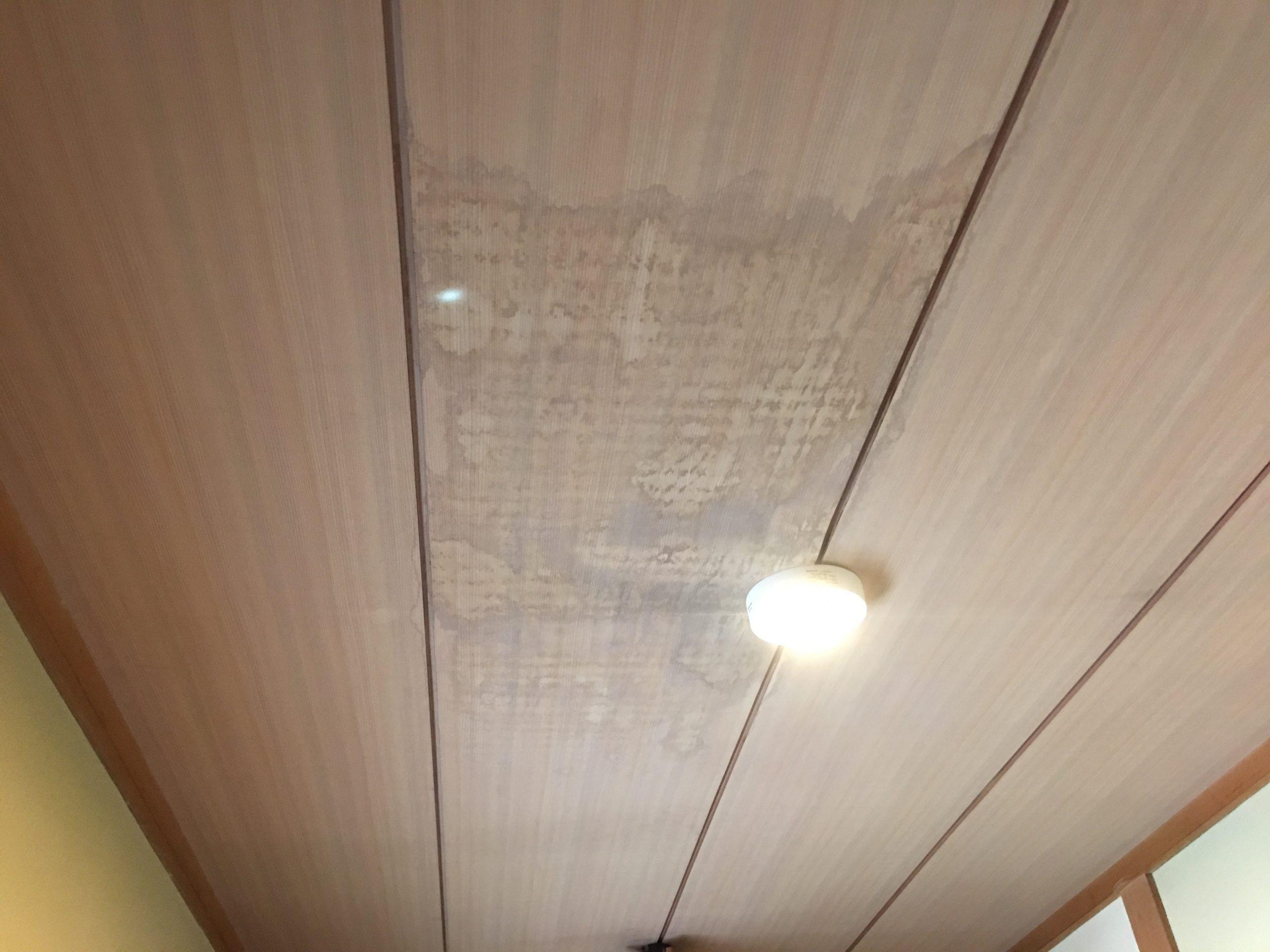 雨漏りが疑われる天井