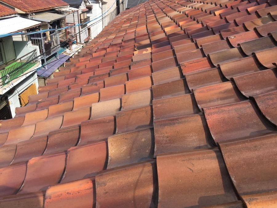 連棟 釉薬瓦で葺かれた屋根