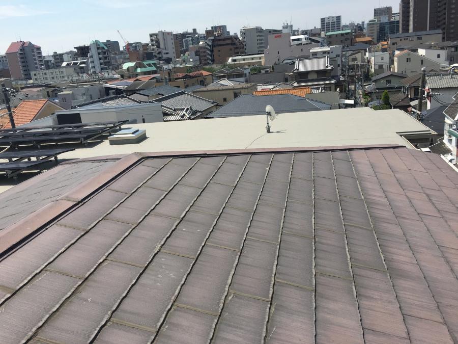 屋根汚れ雨漏り原因