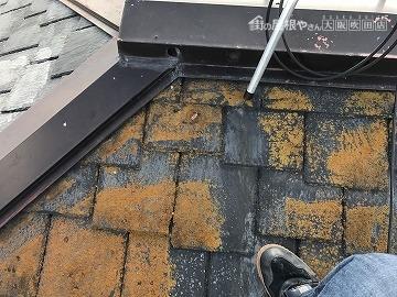 屋根塗装 屋根にコケ