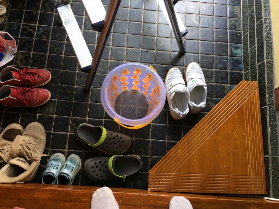 雨漏りの雨水を受けるバケツ