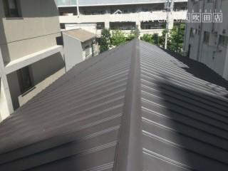 ガルバリウム鋼板施工完了