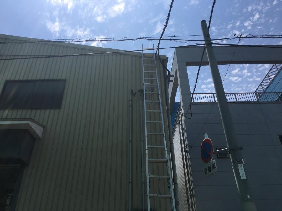 倉庫に梯子をかけての作業