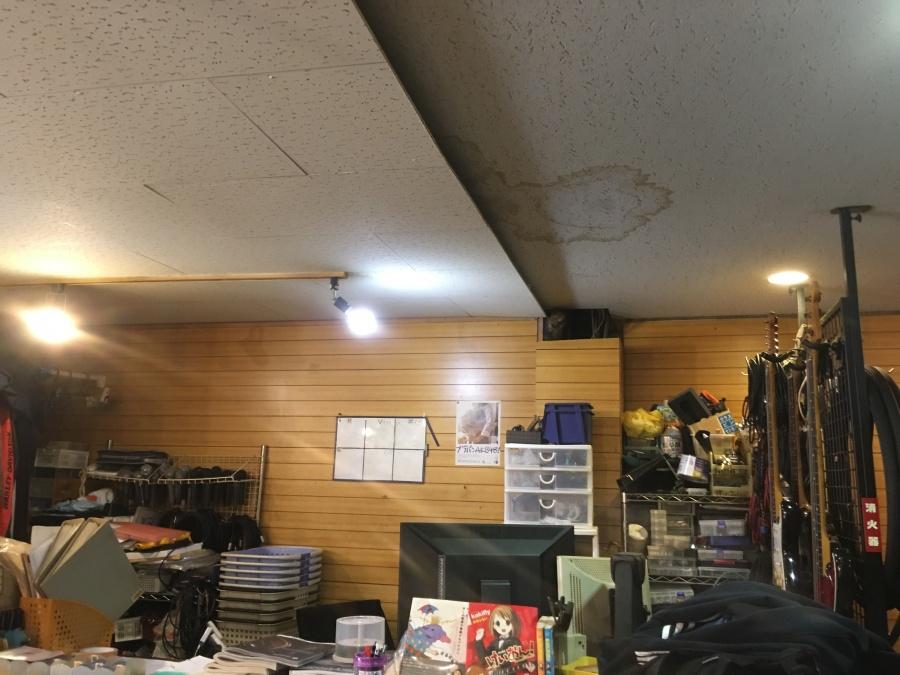 居室天井雨漏りによるシミ
