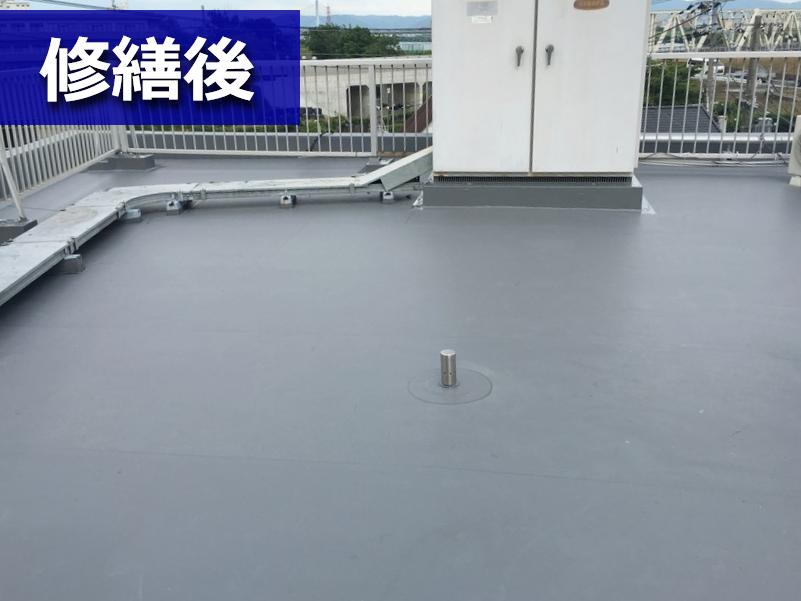 修繕後の陸屋根