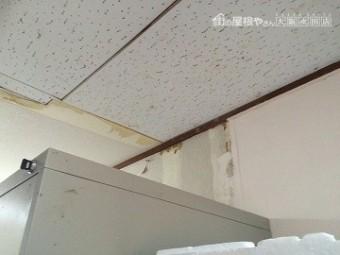 雨漏り調査 壁雨染み調査