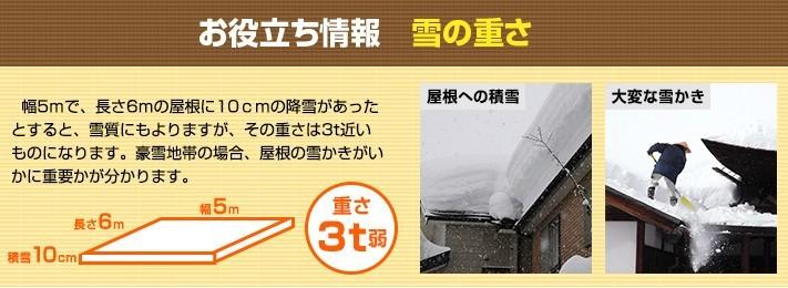 kouji-amadoi9-jup-columns1