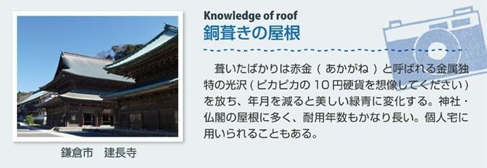 mamechishiki11-jup_02-columns1